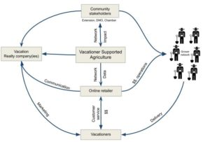 VSA concept flow chart